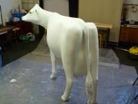 cow-model-037