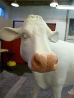 cow-model-051