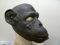 the-rakes-progress-chimp-mask-1