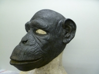 the-rakes-progress-chimp-mask-2